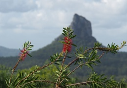 glasshousemountains-26